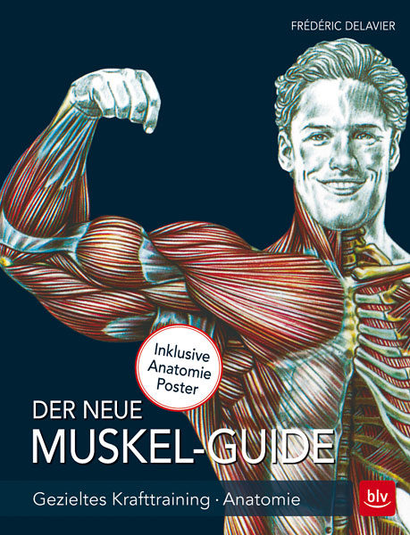 Buch-Cover: Der neue Muskel Guide - Gezieltes Krafttraining, Anatomie